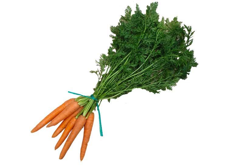Des carottes fanes dans votre panier livré en 24h