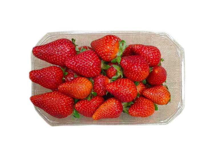 Commander des fraises à Agen