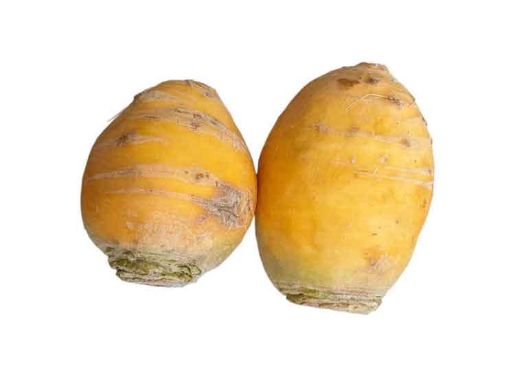 Navet boule d'or dans votre panier de légumes