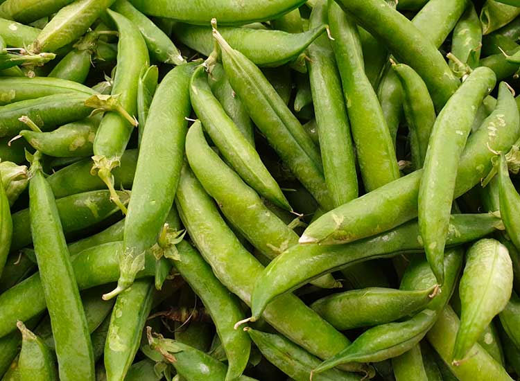 Des petits pois dans votre panier de légumes livraison demain