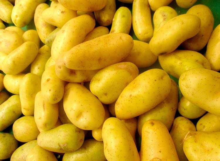 faites vous livrer des pommes de terre grenaille à Agen