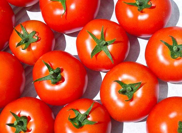 commander des tomates rondes dans votre panier