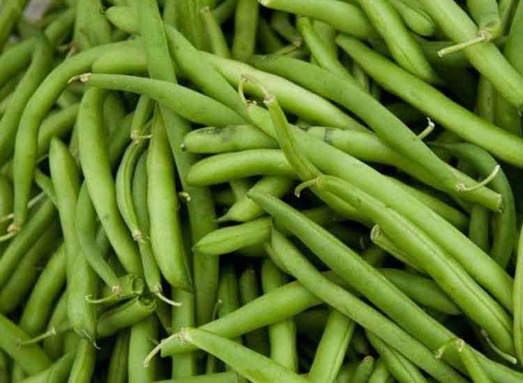 commander des haricots verts fins à Agen
